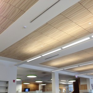 "Techstyle Ceiling by Hunter Douglas. Used by arrangement with Hunter Douglas. All rights reserved.""  - AC6"