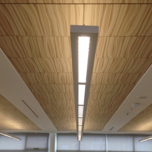 "Techstyle Ceiling by Hunter Douglas. Used by arrangement with Hunter Douglas. All rights reserved."" - AC7"