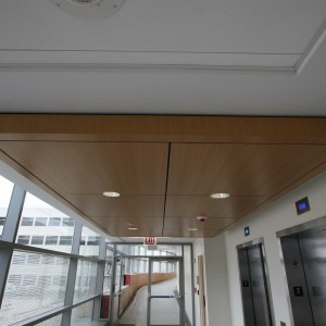 Flat Veneer Ceiling Panels - WC7